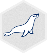 MariaDB Database Server Hosting, MariaDB Database Server, MariaDB Hosting